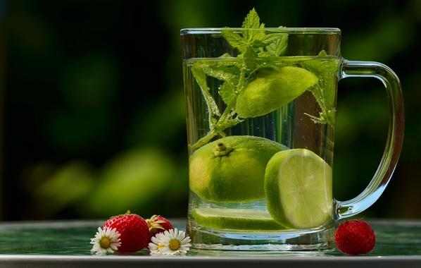Água com limão e hortelã