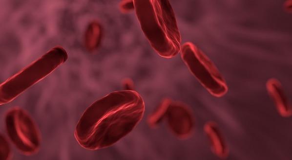 Sintomas, causas e tratamento da anemia