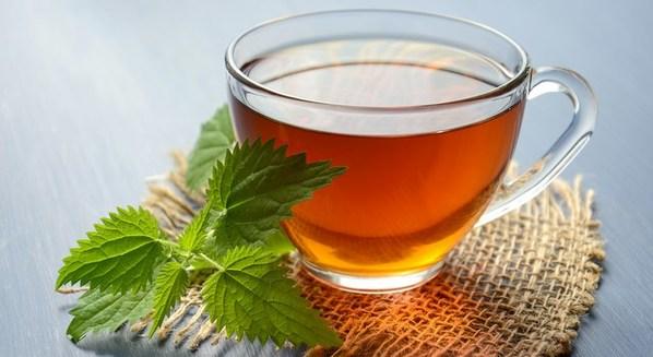 Chá de arruda é abortivo e faz descer a menstruação