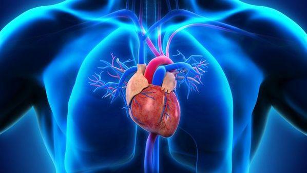 Coração acelerado: causas, sintomas e o que fazer em caso de taquicardia
