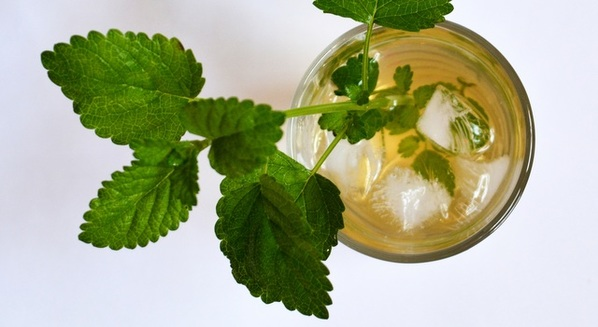 Chá de erva-cidreira: benefícios e como fazer