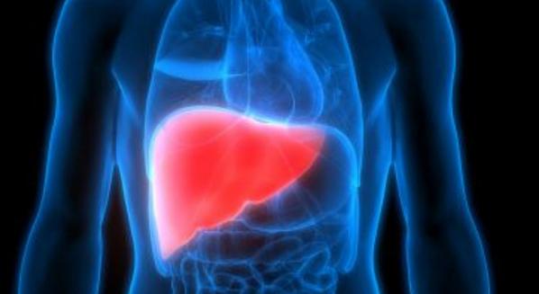 Tratamento para esteatose hepática