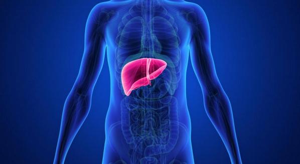 Esteatose hepática tratamento