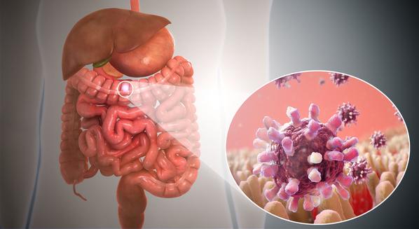Gastroenterite viral: sintomas e tratamento