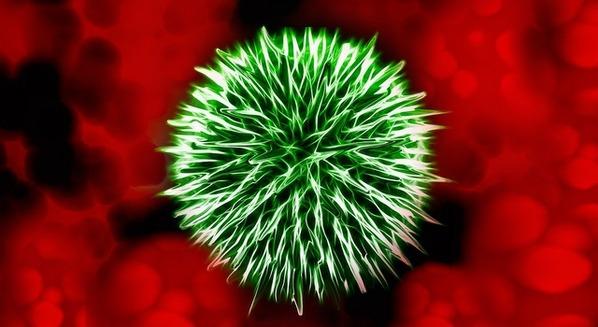 Infecção no sangue: o que é, quais os sintomas e qual é o tratamento para sepse