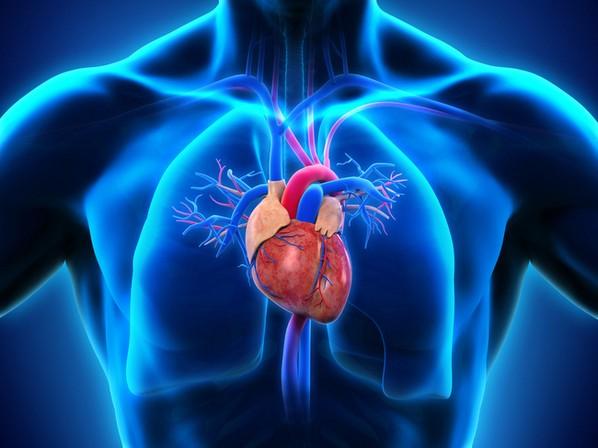 Miocardite: o que é, sintomas e tratamento