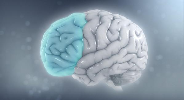 Área do cérebro afetada pelo TDAH